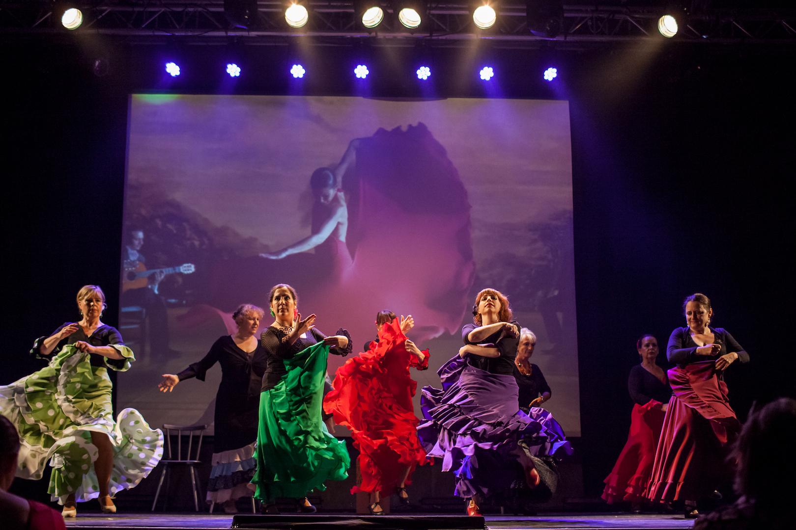 Show_Flamenco_IMG_0511